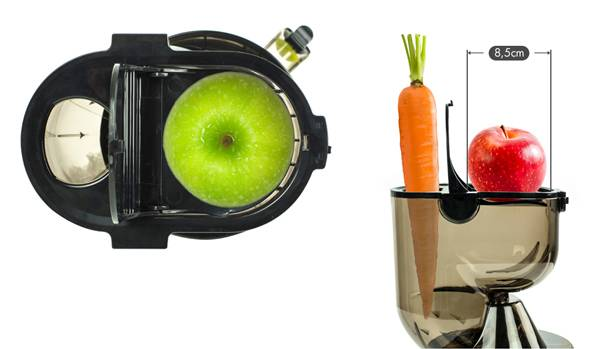 Extractor de zumos Zebra by Zoo